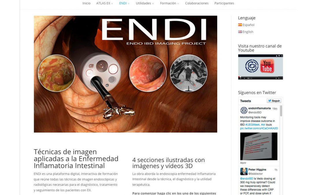Endoinflamatoria, el mayor Atlas Audiovisual de Internet sobre Enfermedad Inflamatoria Intestinal