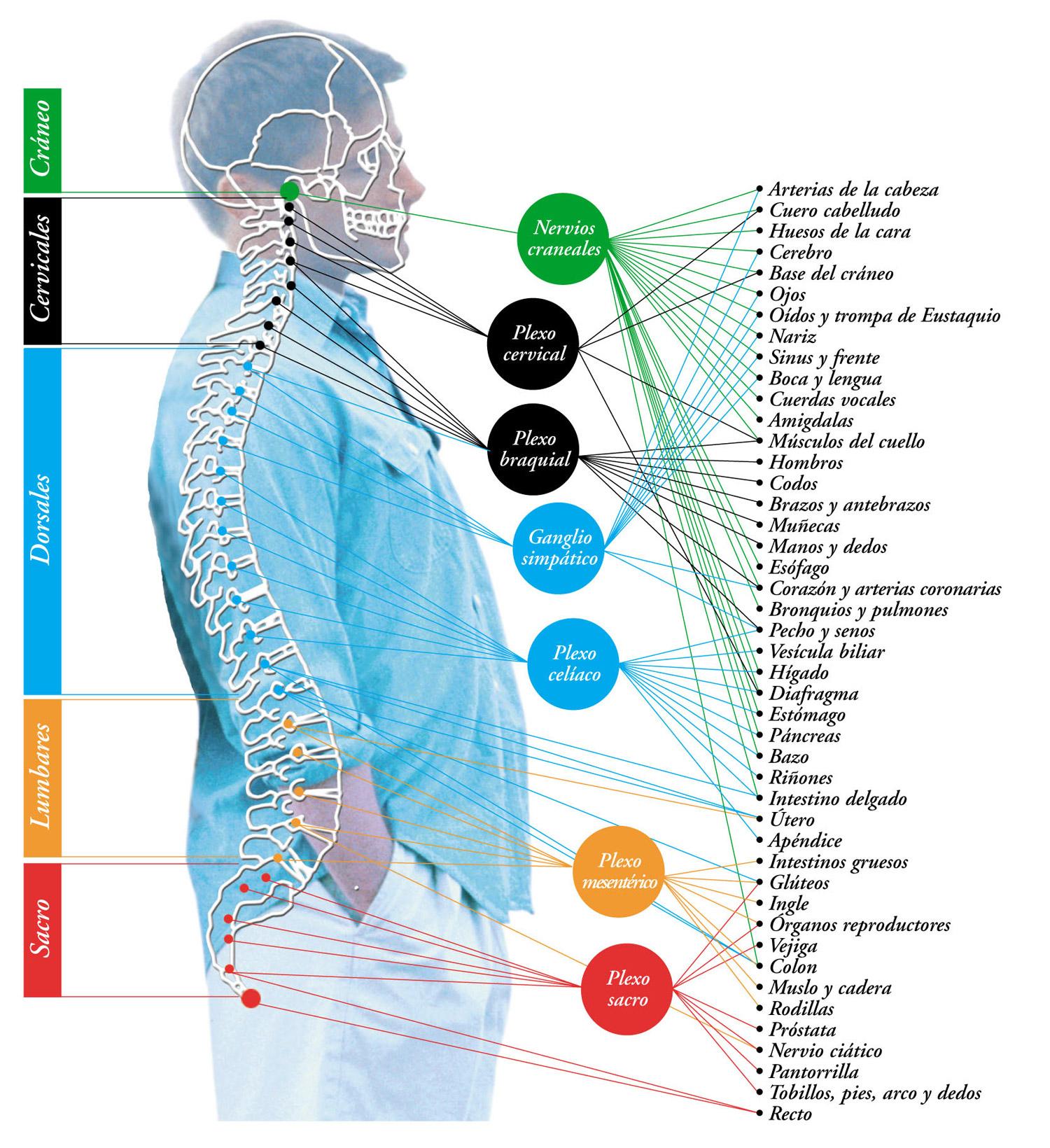 El dolor de espalda no descansa en verano